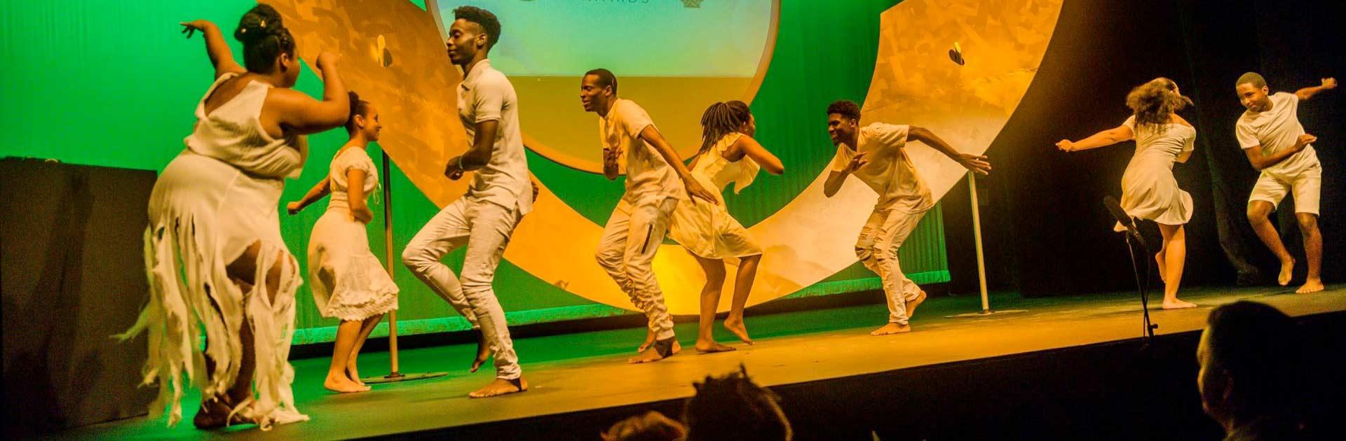 National Arts & Culture Awards
